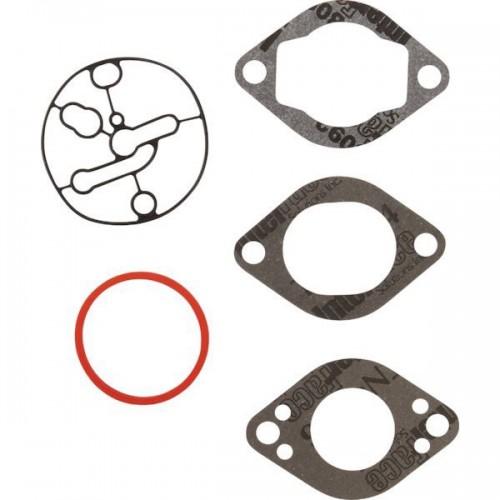 Kit carburateur d'origine référence 696146 pour moteur Briggs et Stratton
