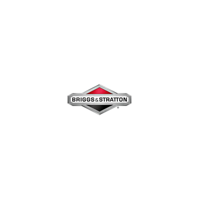 Axe et volet de starter d'origine référence 497230 pour moteur Briggs et Stratton