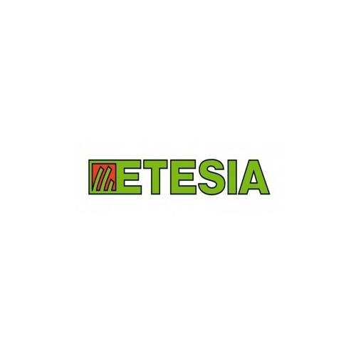 Filtre à huile hydraulique boite d'origine pour attila AV98X référence 34762 ETESIA