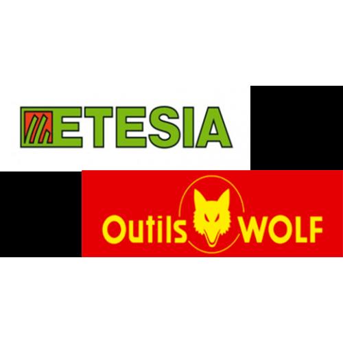Moteur lent de roue arrière d'origine référence 29302 Outils Wolf / Étésia