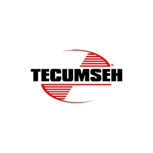 Soupape d'admission d'origine référence 16130009 Tecumseh