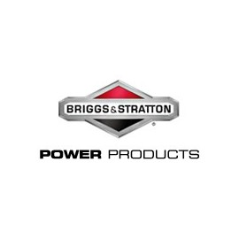 BRIGGS ET STRATTON Power