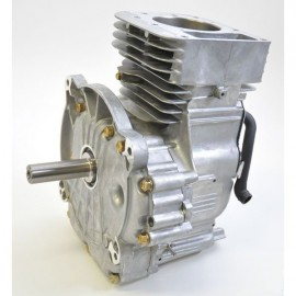 bloc moteur d'origine briggs et Stratton
